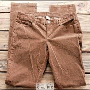 J. Crew Size 31 T Tall City Fit Brown Corduroy